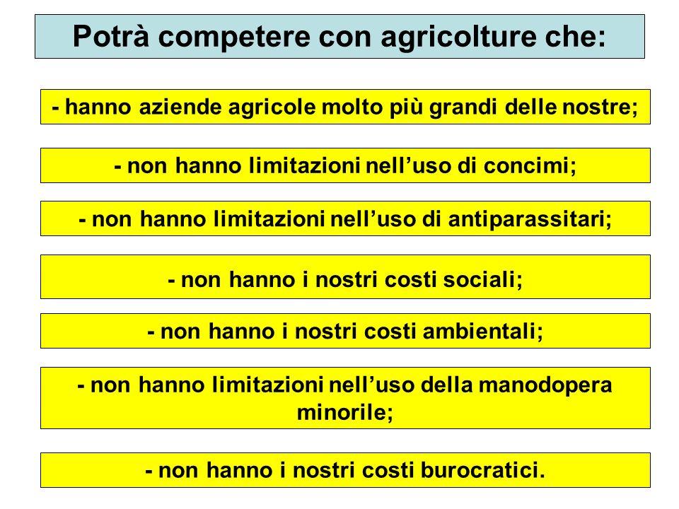 43 Potrà competere con agricolture che: - hanno aziende agricole molto più grandi delle nostre; - non hanno limitazioni nelluso di concimi; - non hann