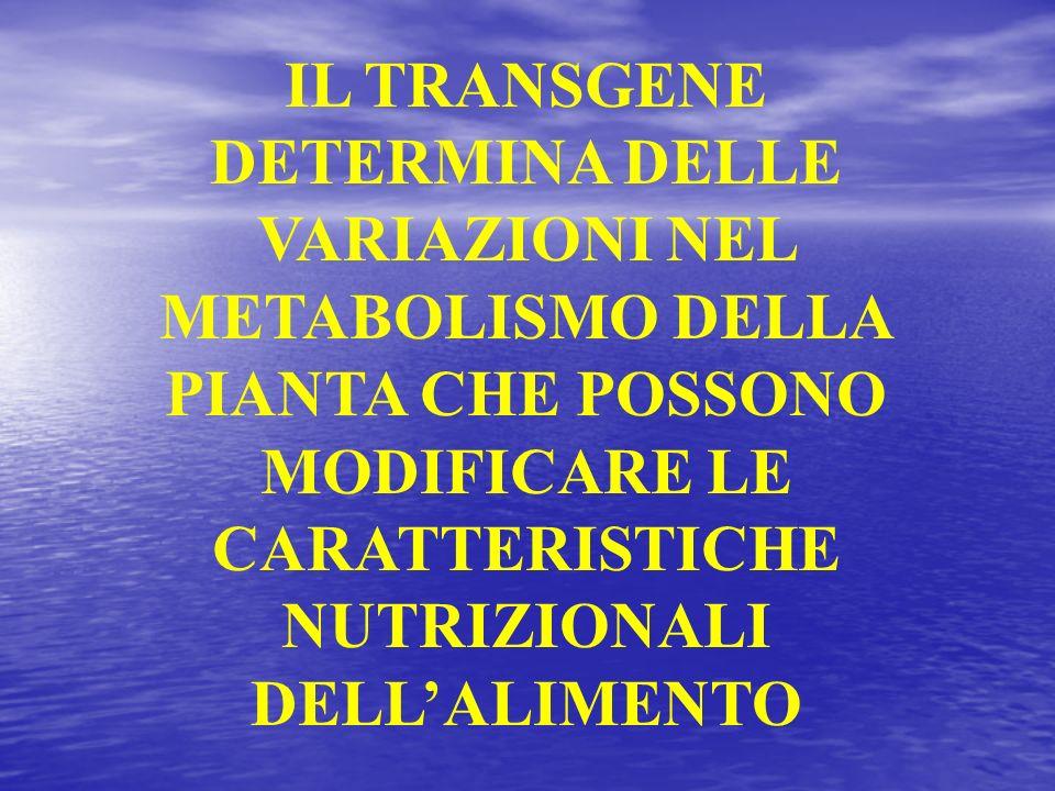 IL TRANSGENE DETERMINA DELLE VARIAZIONI NEL METABOLISMO DELLA PIANTA CHE POSSONO MODIFICARE LE CARATTERISTICHE NUTRIZIONALI DELLALIMENTO