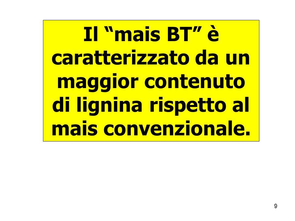 9 Il mais BT è caratterizzato da un maggior contenuto di lignina rispetto al mais convenzionale.
