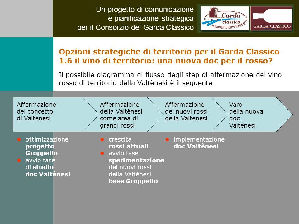 Un progetto di comunicazione e pianificazione strategica per il Consorzio del Garda Classico Affermazione dei nuovi rossi della Valtènesi implementazi