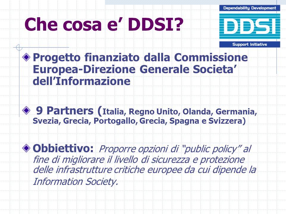 Che cosa e DDSI.