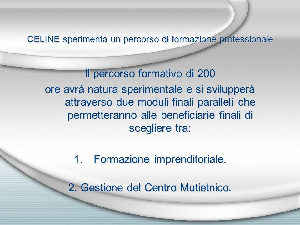 CELINE sperimenta un percorso di formazione professionale Il percorso formativo di 200 ore avrà natura sperimentale e si svilupperà attraverso due moduli finali paralleli che permetteranno alle beneficiarie finali di scegliere tra: 1.Formazione imprenditoriale.