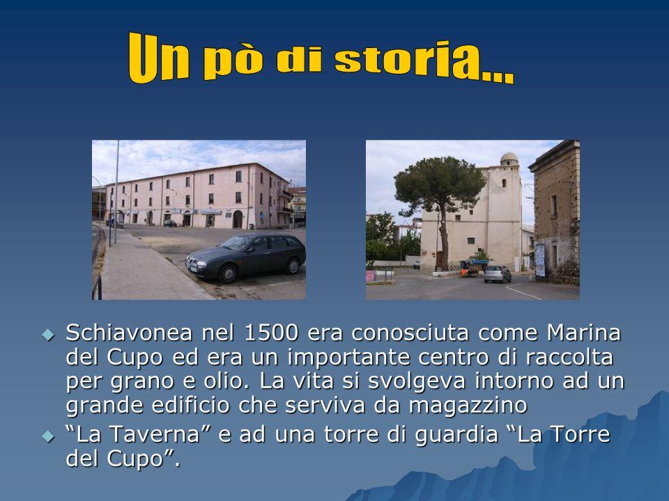 Schiavonea nel 1500 era conosciuta come Marina del Cupo ed era un importante centro di raccolta per grano e olio. La vita si svolgeva intorno ad un gr