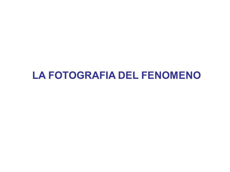 IMMIGRATI E MERCATO DEL LAVORO (1) Fonte: Elaborazione dati Banca dItalia ed ISTAT (2008) Come possiamo vedere gli stranieri hanno dei tassi di occupazione molto alti (superiori a quelli degli italiani).