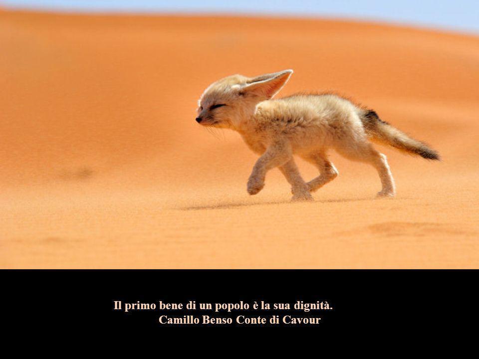 Il primo bene di un popolo è la sua dignità. Camillo Benso Conte di Cavour