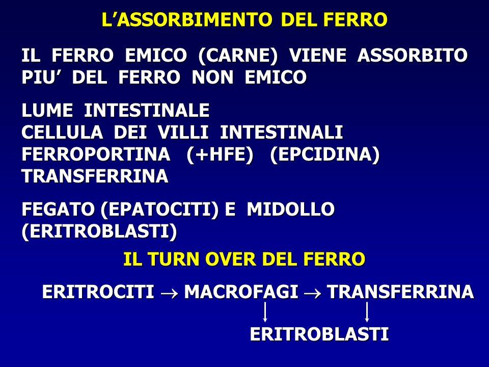 COME SI MISURA IL FERRO NELLORGANISMO SATURAZIONE DELLA TRANSFERRINA SIDEREMIA TRANSFERRINEMIA120300 X 100 X 100 = 40 % - MOLTO BASSA (< 10%) IN CASO DI ANEMIA SIDEROPENICA SIDEROPENICA - BASSA (< 25%) IN CASO DI CARENZA MARZIALE - ALTA (> 50%) IN CASO DI ANEMIA SECONDARIA - MOLTO ALTA (> 75%) IN CASO DI EMOCROMATOSI E EMOSIDEROSI EMOSIDEROSI