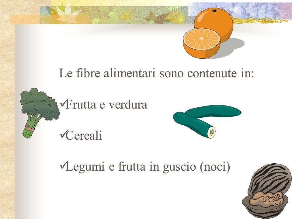 Le fibre alimentari sono parti di alimenti vegetali che il nostro organismo non è in grado di assimilare; manca infatti nel nostro apparato digerente