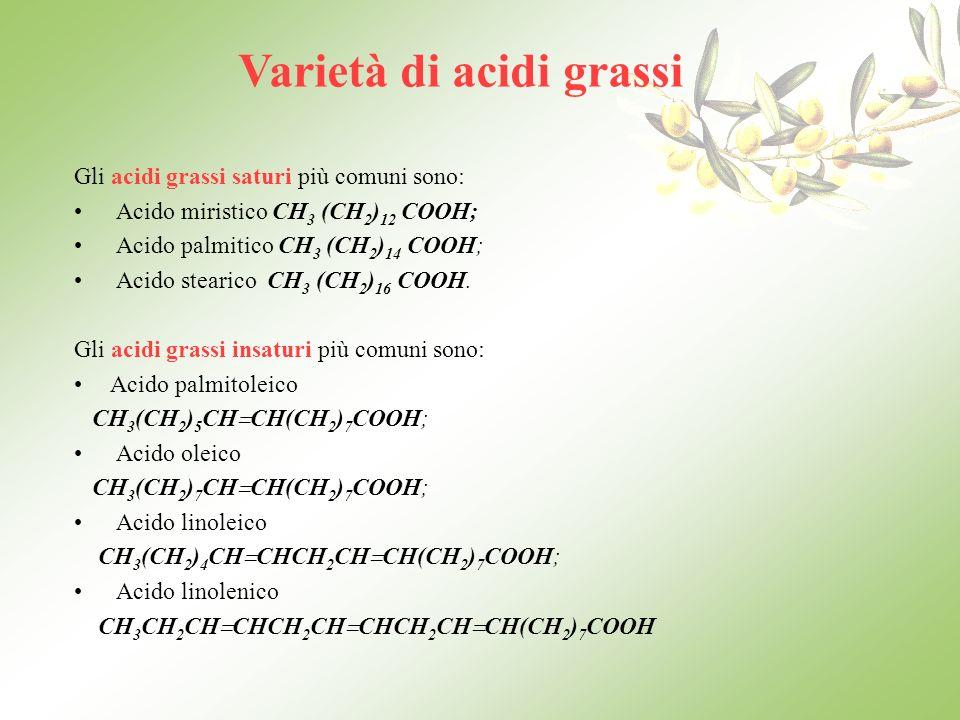 Olio doliva e grasso umano a confronto Olio dolivaGrasso umano Ac.oleico70 -80%65-87% Ac.linoleico4-12%- Ac.stearico2-6%5 -6,5% Ac.palmitico7-15%17-21