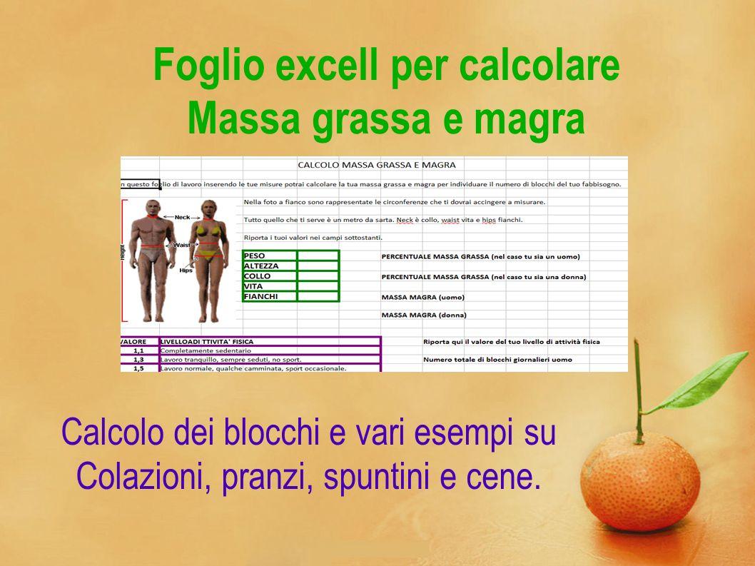 Foglio excell per calcolare Massa grassa e magra Calcolo dei blocchi e vari esempi su Colazioni, pranzi, spuntini e cene.