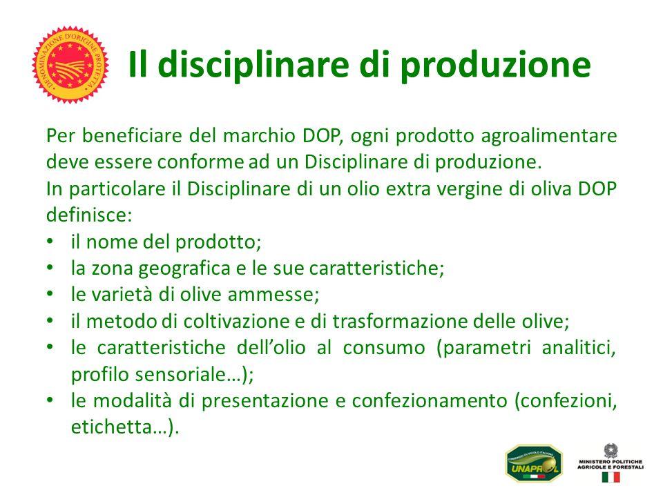 Il disciplinare di produzione Per beneficiare del marchio DOP, ogni prodotto agroalimentare deve essere conforme ad un Disciplinare di produzione. In