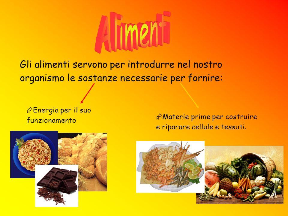 Queste sostanze prendono il nome di principi nutritivi o nutrienti.