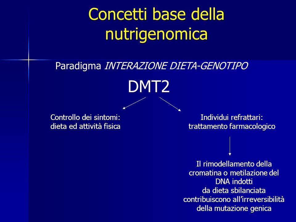 Concetti base della nutrigenomica Paradigma INTERAZIONE DIETA-GENOTIPO Controllo dei sintomi: dieta ed attività fisica Individui refrattari: trattamento farmacologico Il rimodellamento della cromatina o metilazione del DNA indotti da dieta sbilanciata contribuiscono allirreversibilità della mutazione genica DMT2