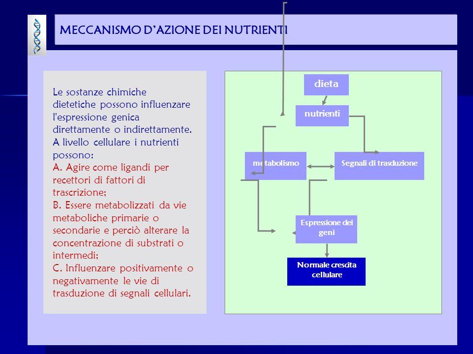 MECCANISMO DAZIONE DEI NUTRIENTI dieta Segnali di trasduzionemetabolismo Normale crescita cellulare Espressione dei geni nutrienti Le sostanze chimiche dietetiche possono influenzare l espressione genica direttamente o indirettamente.