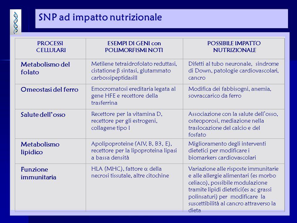 SNP ad impatto nutrizionale PROCESSI CELLULARI ESEMPI DI GENI con POLIMORFISMI NOTI POSSIBILE IMPATTO NUTRIZIONALE Metabolismo del folato Metilene tetraidrofolato reduttasi, cistatione sintasi, glutammato carbossipeptidasiII Difetti al tubo neuronale, sindrome di Down, patologie cardiovascolari, cancro Omeostasi del ferro Emocromatosi ereditaria legata al gene HFE e recettore della trasferrina Modifica dei fabbisogni, anemia, sovraccarico da ferro Salute dellosso Recettore per la vitamina D, recettore per gli estrogeni, collagene tipo I Associazione con la salute dellosso, osteoporosi, mediazione nella traslocazione del calcio e del fosfato Metabolismo lipidico Apolipoproteine (AIV, B, B3, E), recettore per la lipoproteina lipasi a bassa densità Miglioramento degli interventi dietetici per modificare i biomarkers cardiovascolari Funzione immunitaria HLA (MHC), fattore della necrosi tissutale, altre citochine Variazione alle risposte immunitarie e alle allergie alimentari (es morbo celiaco), possibile modulazione tramite lipidi dietetici(es ac grassi polinsaturi) per modificare la suscettibilità al cancro attraverso la dieta