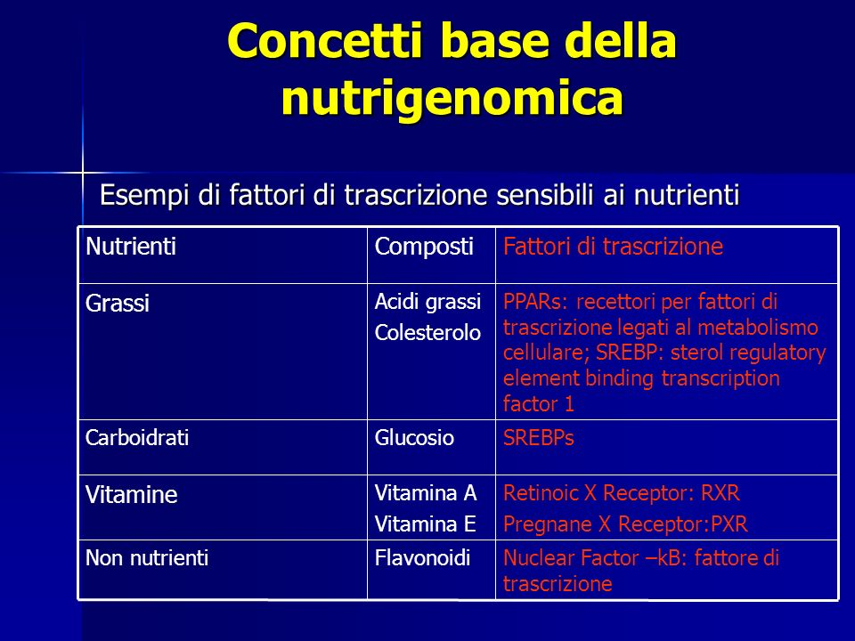 Esempi di fattori di trascrizione sensibili ai nutrienti Nuclear Factor –kB: fattore di trascrizione FlavonoidiNon nutrienti Retinoic X Receptor: RXR Pregnane X Receptor:PXR Vitamina A Vitamina E Vitamine SREBPsGlucosioCarboidrati PPARs: recettori per fattori di trascrizione legati al metabolismo cellulare; SREBP: sterol regulatory element binding transcription factor 1 Acidi grassi Colesterolo Grassi Fattori di trascrizioneCompostiNutrienti Concetti base della nutrigenomica
