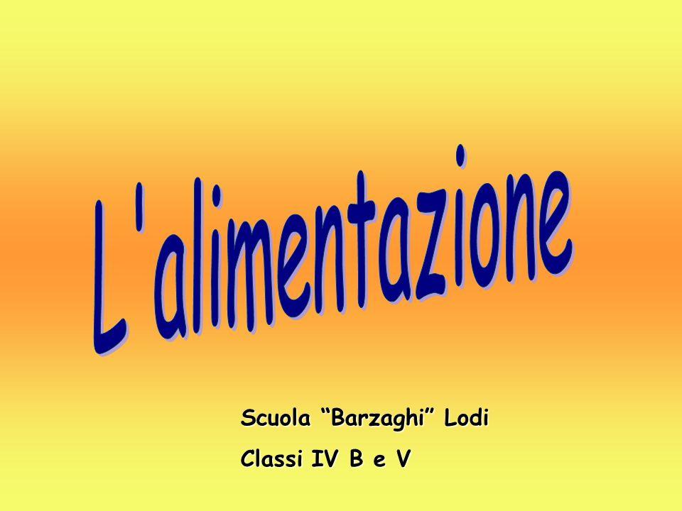 Scuola Barzaghi Lodi Classi IV B e V
