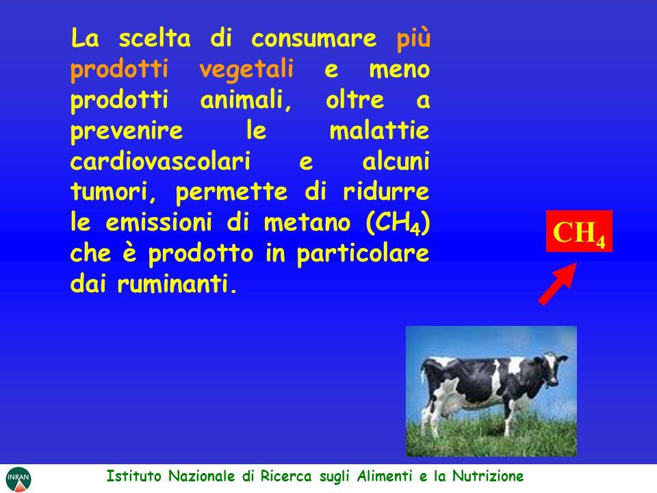 La scelta di consumare più prodotti vegetali e meno prodotti animali, oltre a prevenire le malattie cardiovascolari e alcuni tumori, permette di ridur