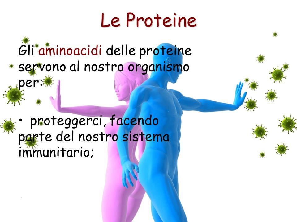 Le Proteine proteggerci, facendo parte del nostro sistema immunitario; Gli aminoacidi delle proteine servono al nostro organismo per: