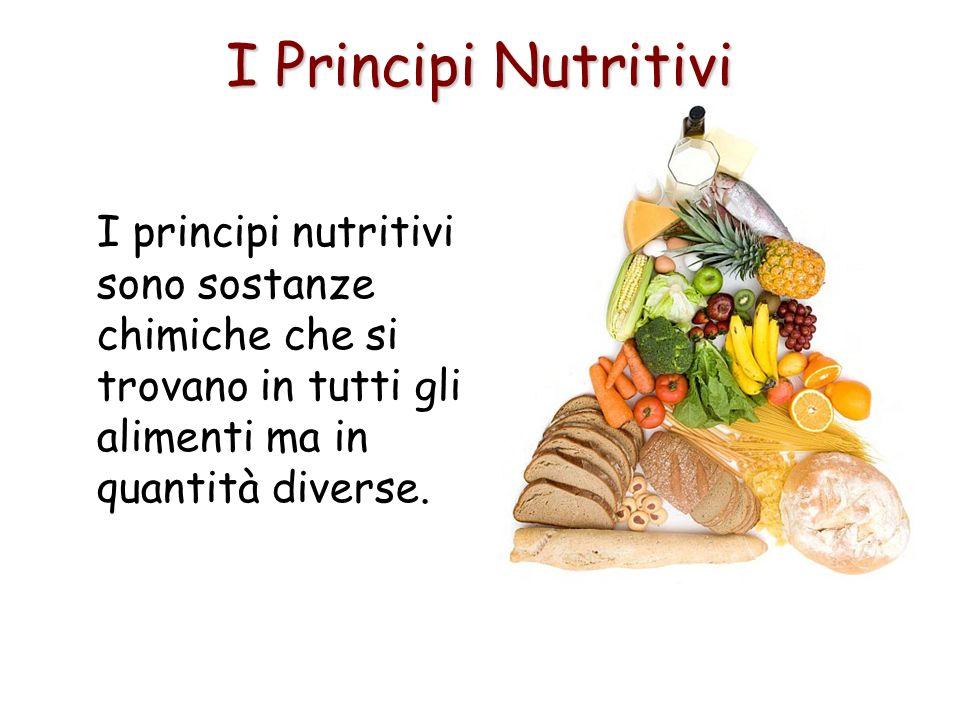I principi nutritivi sono sostanze chimiche che si trovano in tutti gli alimenti ma in quantità diverse.