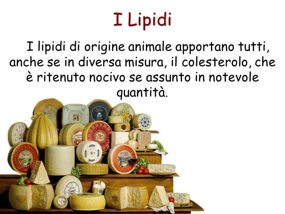 I Lipidi I lipidi di origine animale apportano tutti, anche se in diversa misura, il colesterolo, che è ritenuto nocivo se assunto in notevole quantit