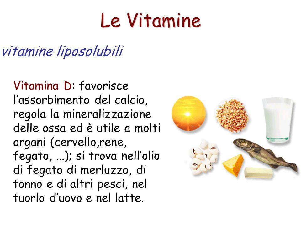 Le Vitamine Vitamina D: favorisce lassorbimento del calcio, regola la mineralizzazione delle ossa ed è utile a molti organi (cervello,rene, fegato,...