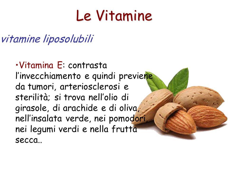 Le Vitamine Vitamina E: contrasta linvecchiamento e quindi previene da tumori, arteriosclerosi e sterilità; si trova nellolio di girasole, di arachide