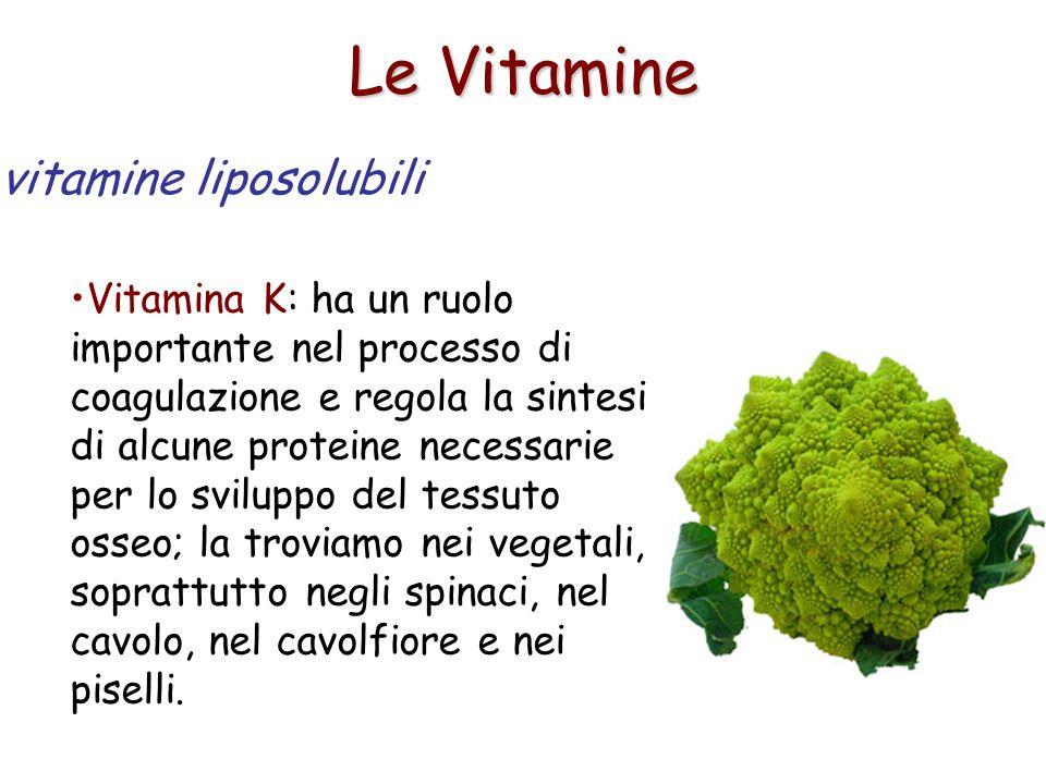 Le Vitamine Vitamina K: ha un ruolo importante nel processo di coagulazione e regola la sintesi di alcune proteine necessarie per lo sviluppo del tess
