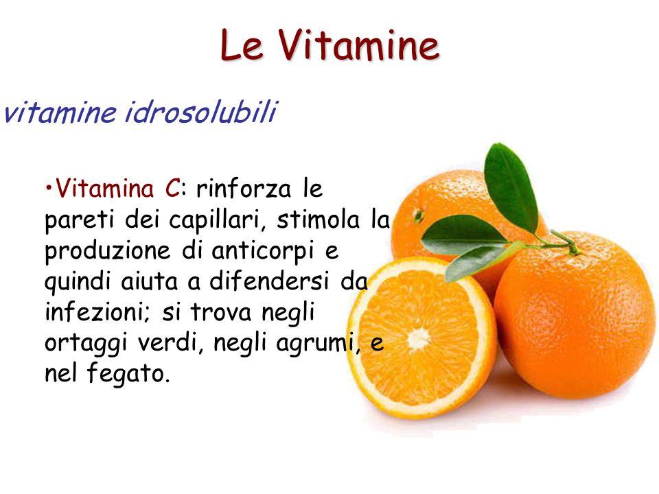 Le Vitamine Vitamina C: rinforza le pareti dei capillari, stimola la produzione di anticorpi e quindi aiuta a difendersi da infezioni; si trova negli