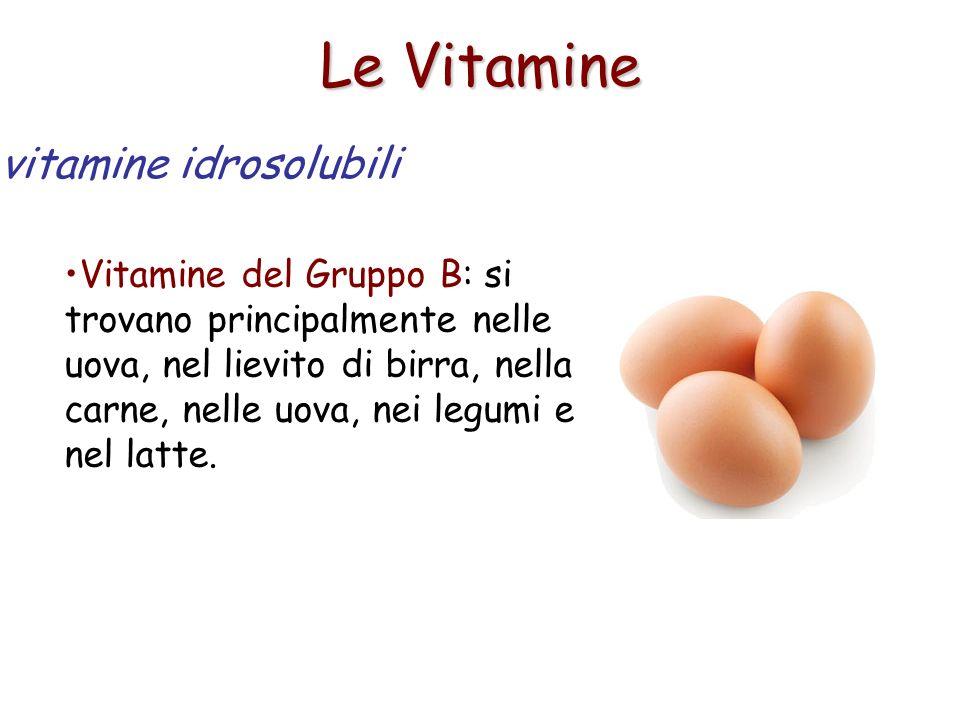 Le Vitamine Vitamine del Gruppo B: si trovano principalmente nelle uova, nel lievito di birra, nella carne, nelle uova, nei legumi e nel latte. vitami