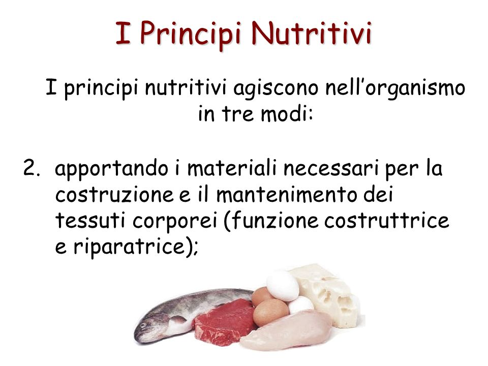 I Principi Nutritivi I principi nutritivi agiscono nellorganismo in tre modi: 2.apportando i materiali necessari per la costruzione e il mantenimento