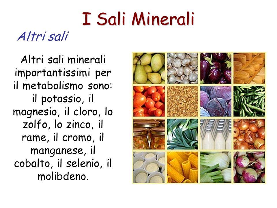 I Sali Minerali Altri sali Altri sali minerali importantissimi per il metabolismo sono: il potassio, il magnesio, il cloro, lo zolfo, lo zinco, il ram