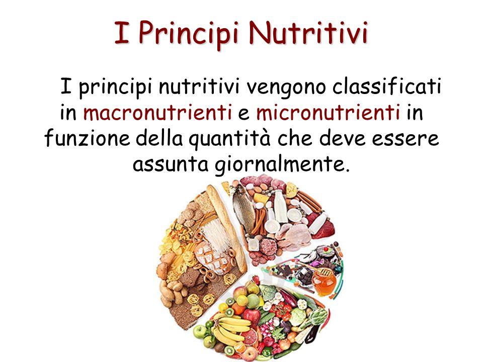 I Principi Nutritivi I principi nutritivi vengono classificati in macronutrienti e micronutrienti in funzione della quantità che deve essere assunta g