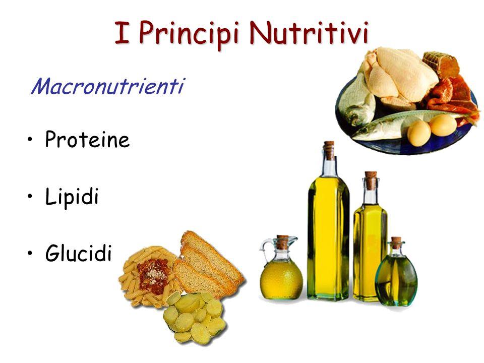 I Principi Nutritivi Macronutrienti Proteine Lipidi Glucidi