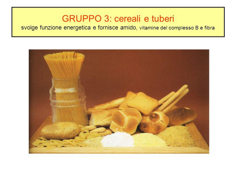 GRUPPO 3: cereali e tuberi svolge funzione energetica e fornisce amido, vitamine del complesso B e fibra
