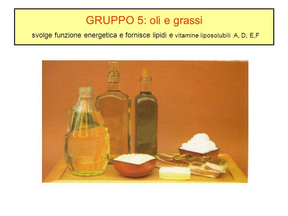 GRUPPO 5: oli e grassi svolge funzione energetica e fornisce lipidi e vitamine liposolubili A, D, E,F
