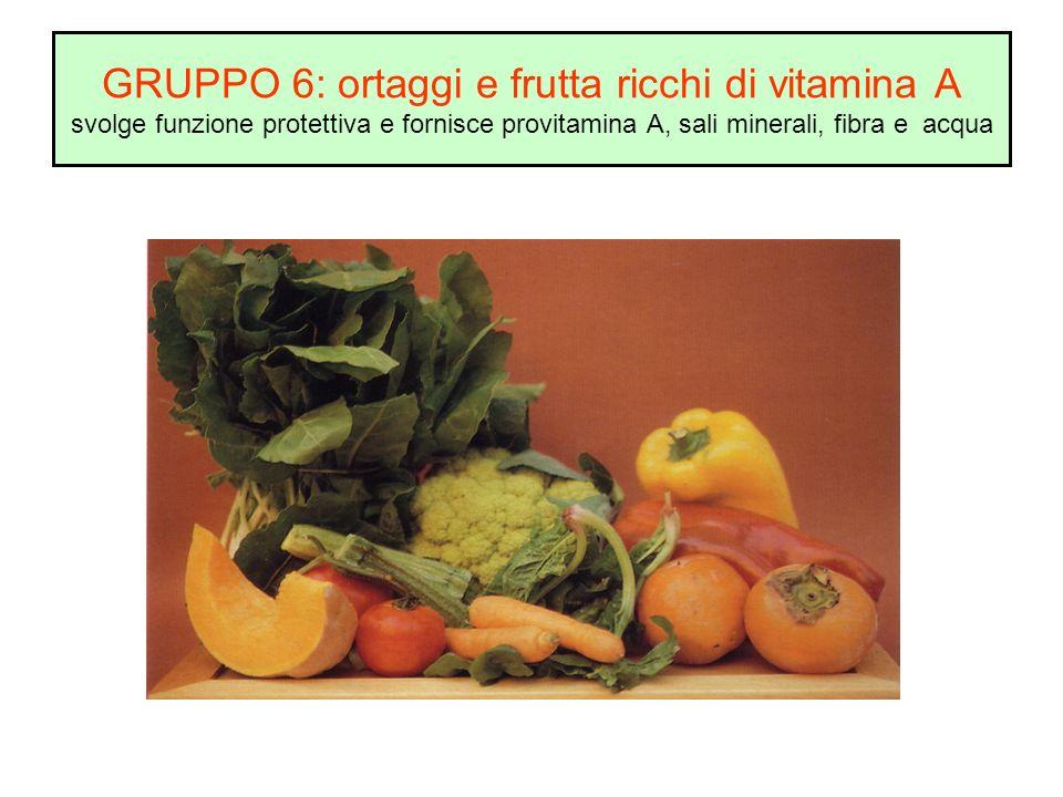 GRUPPO 6: ortaggi e frutta ricchi di vitamina A svolge funzione protettiva e fornisce provitamina A, sali minerali, fibra e acqua