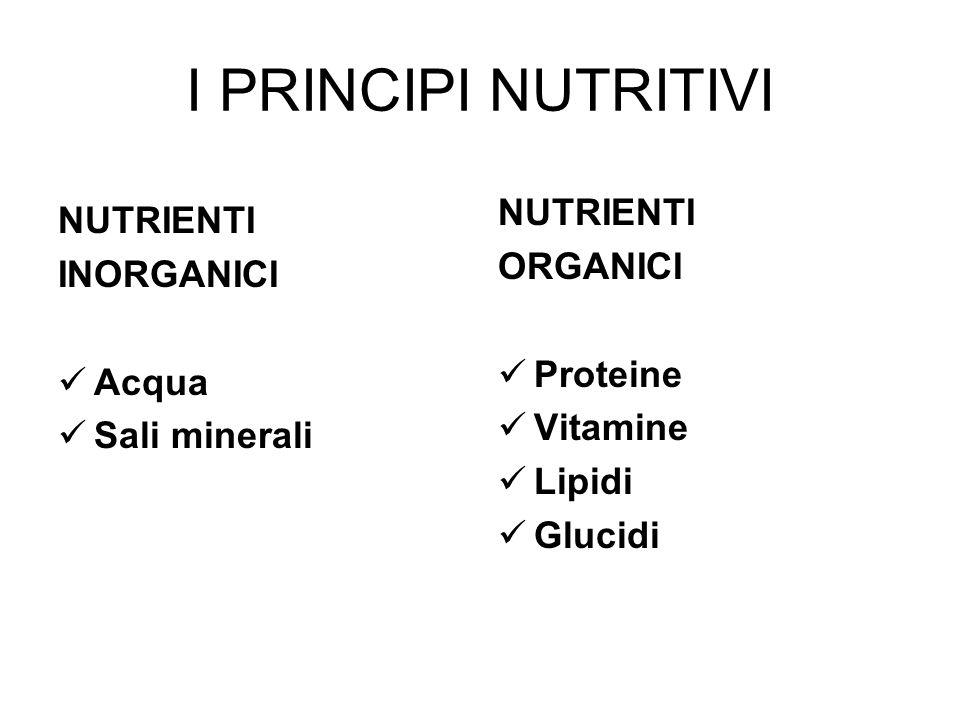 I PRINCIPI NUTRITIVI NUTRIENTI INORGANICI Acqua Sali minerali NUTRIENTI ORGANICI Proteine Vitamine Lipidi Glucidi