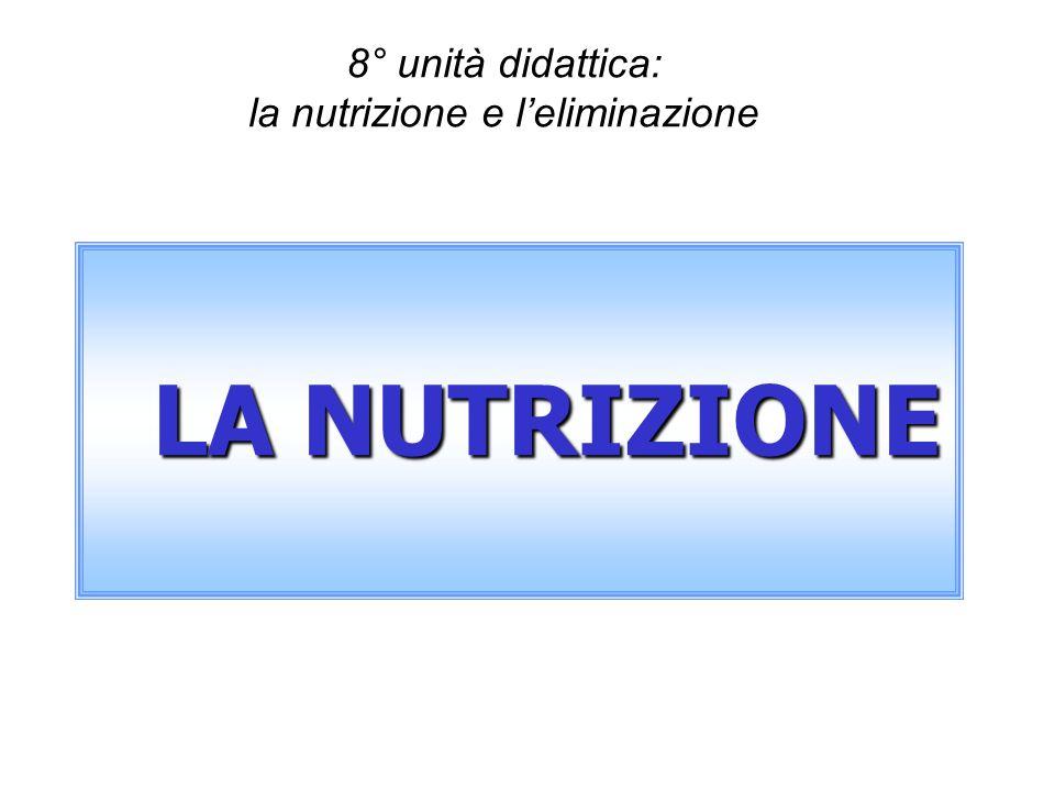 8° unità didattica: la nutrizione e leliminazione LA NUTRIZIONE