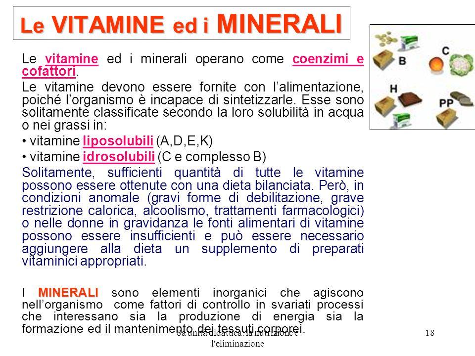 8a unità didattica: la nutrizione e l'eliminazione 18 Le VITAMINE ed i MINERALI Le vitamine ed i minerali operano come coenzimi e cofattori. Le vitami