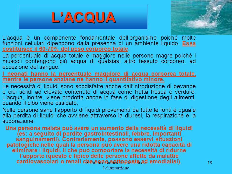 8a unità didattica: la nutrizione e l'eliminazione 19 LACQUA Lacqua è un componente fondamentale dellorganismo poiché molte funzioni cellulari dipendo