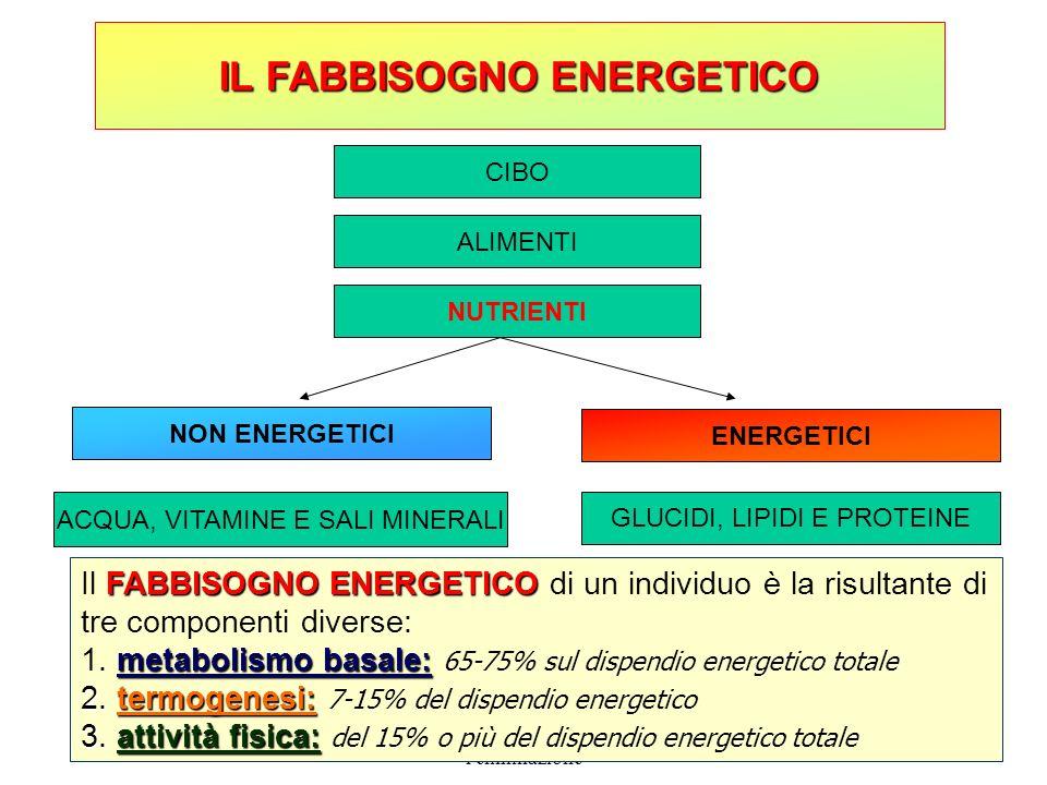 8a unità didattica: la nutrizione e l'eliminazione 20 IL FABBISOGNO ENERGETICO CIBO ALIMENTI NUTRIENTI NON ENERGETICI ACQUA, VITAMINE E SALI MINERALI