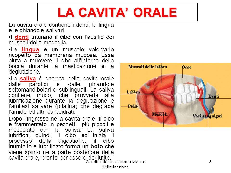 8a unità didattica: la nutrizione e l'eliminazione 8 LA CAVITA ORALE La cavità orale contiene i denti, la lingua e le ghiandole salivari. I denti trit