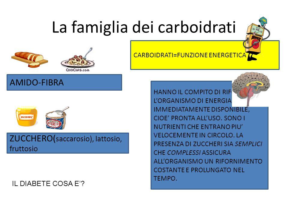 La famiglia dei grassi SONO LE NOSTRE RISERVE DI ENERGIA. QUESTA CAPACITA DI ACCUMULARE I GRASSI E UTILE IN MOMENTI DI CARESTIE QUANDO LUOMO VIVEVA DI