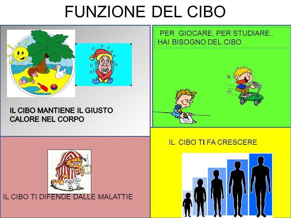 FUNZIONE DEL CIBO PER GIOCARE, PER STUDIARE..