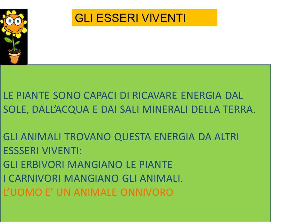 GRASSI VITAMINE LIPOSOLUBULI PROTEINE ALTO V.B.
