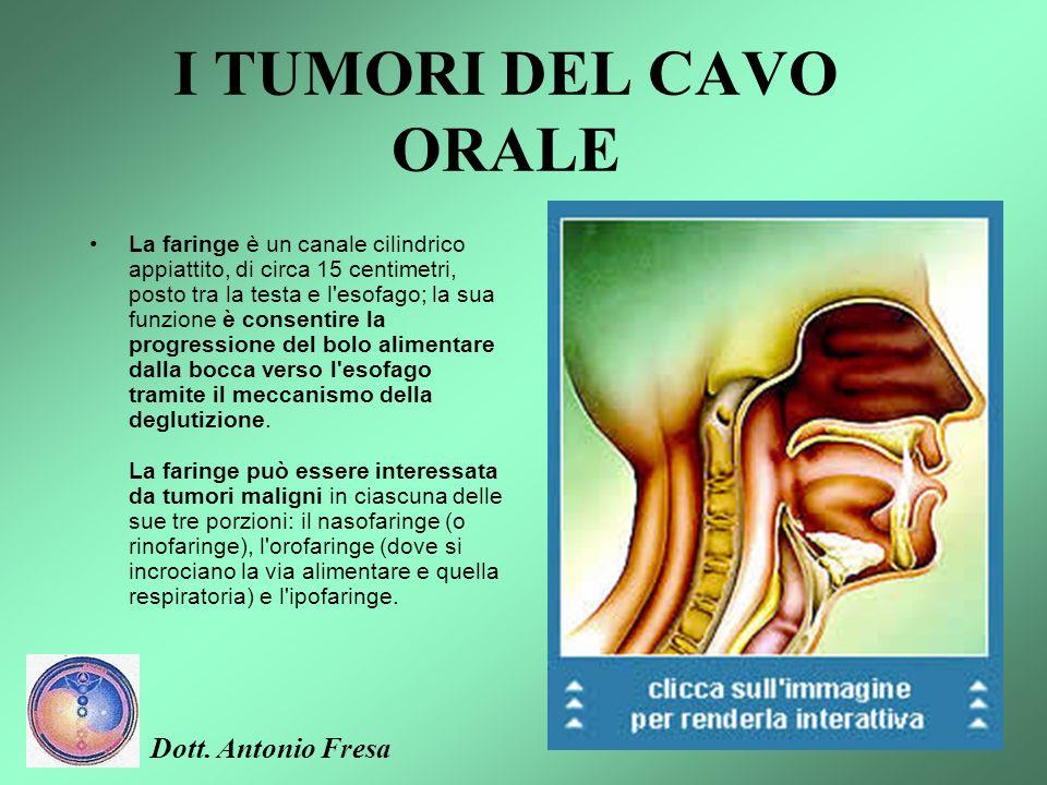 I TUMORI DEL CAVO ORALE Il cavo orale comprende i due terzi anteriori della lingua, le gengive, la superficie interna delle guance e delle labbra, la