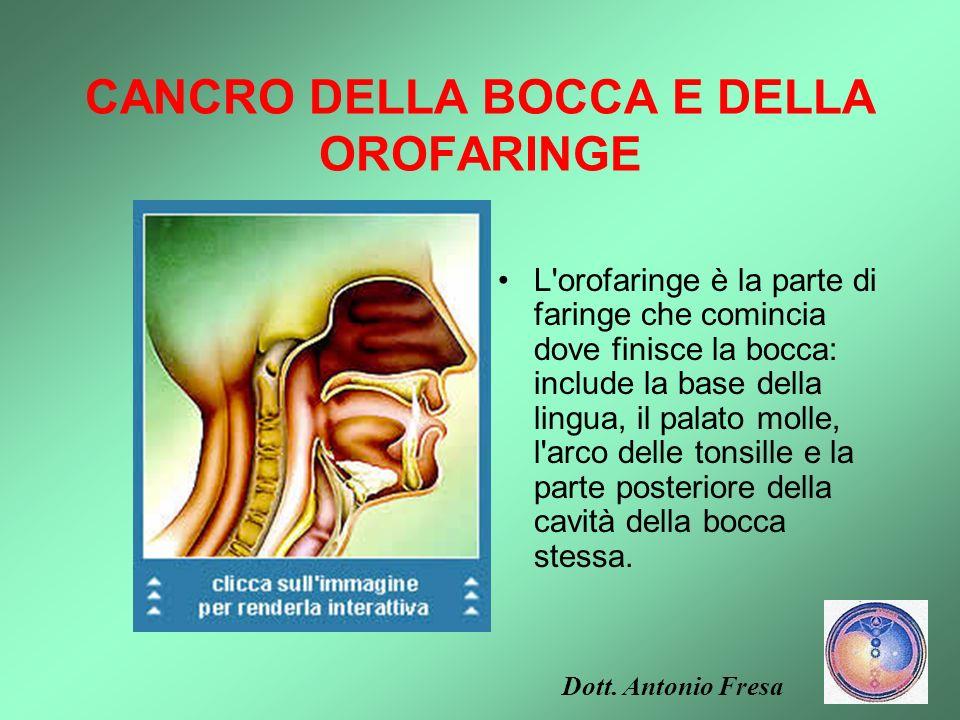 I TUMORI DEL CAVO ORALE La laringe è un organo dell'apparato respiratorio a forma di condotto, lungo circa 12 centimetri, collegato verso l'alto con l