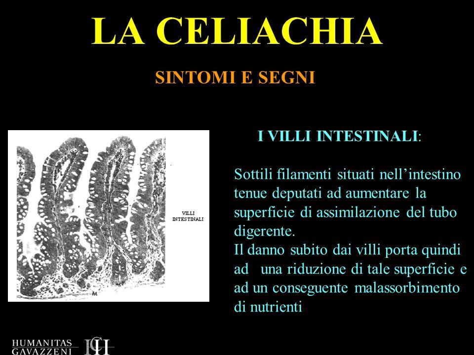 LA CELIACHIA SINTOMI E SEGNI I VILLI INTESTINALI: Sottili filamenti situati nellintestino tenue deputati ad aumentare la superficie di assimilazione d