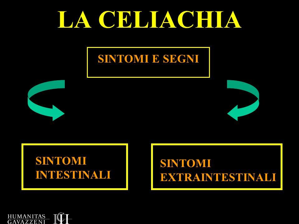 LA CELIACHIA SINTOMI E SEGNI SINTOMI INTESTINALI SINTOMI EXTRAINTESTINALI