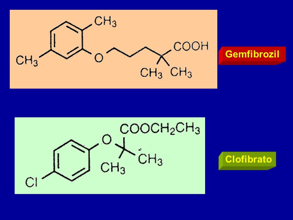 Gemfibrozil Clofibrato